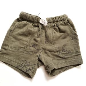 6M Dinosaur Shorts Carters